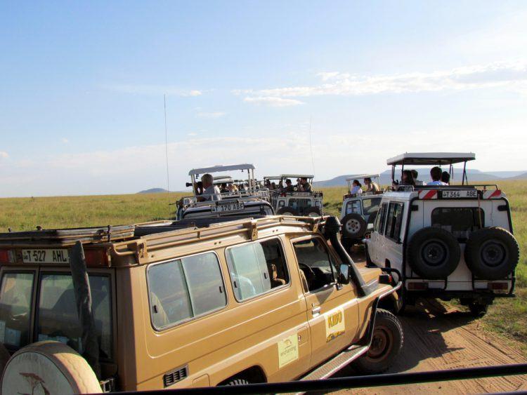 Varios vehículos de safari se amontonan en el Parque Nacional Serengueti