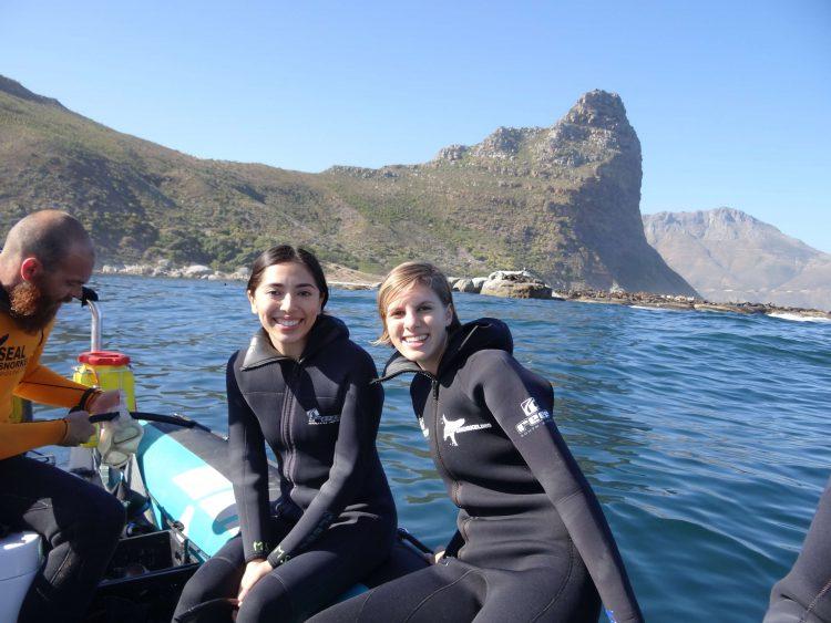 Excursión de Animal Ocean para nadar con lobos marinos