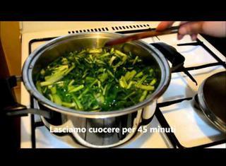 Come cucinare la cicoria