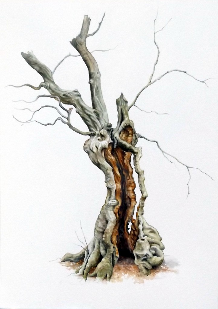 tree painting hornbeam wood and sinew