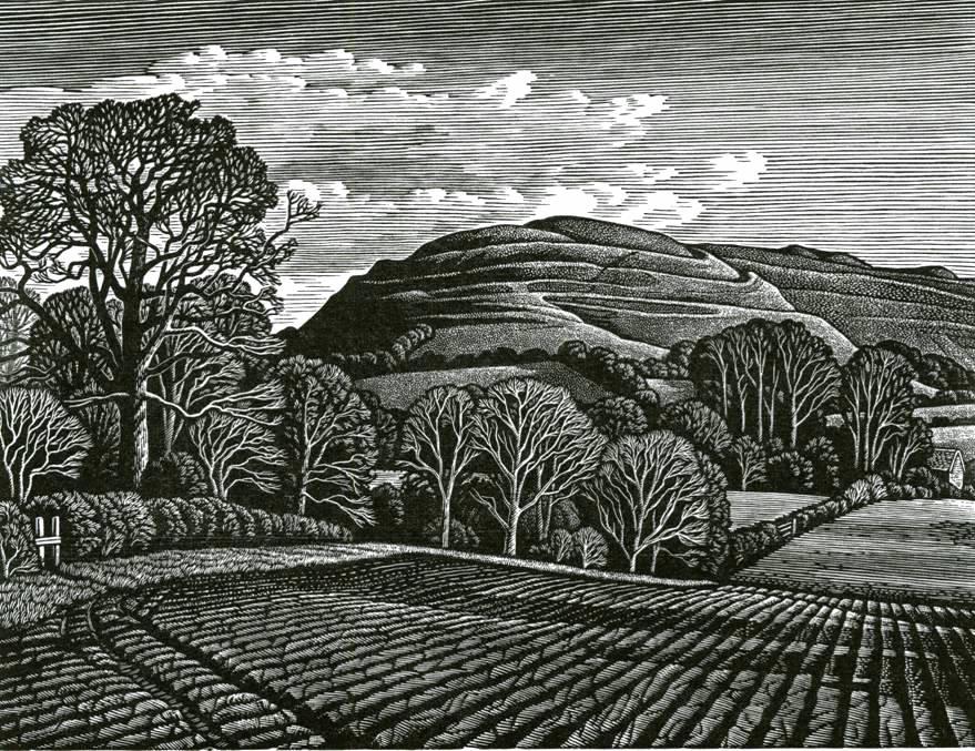 73 Hambledon Hill