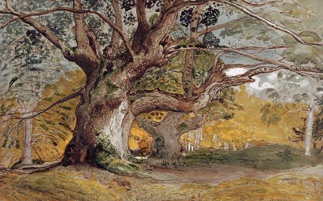 samuel-palmer-oak-trees-lullingstone-park-1376086485_org