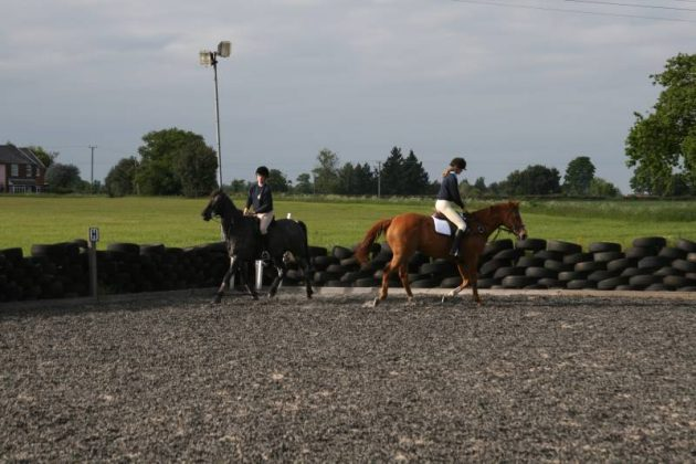 Lessons at Bylam Livery Stables