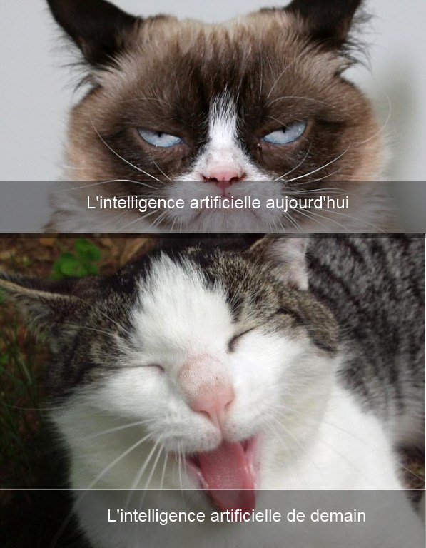 intelligence-artificielle-blague