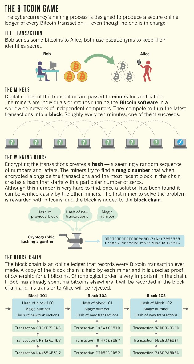bitcoin-infographie