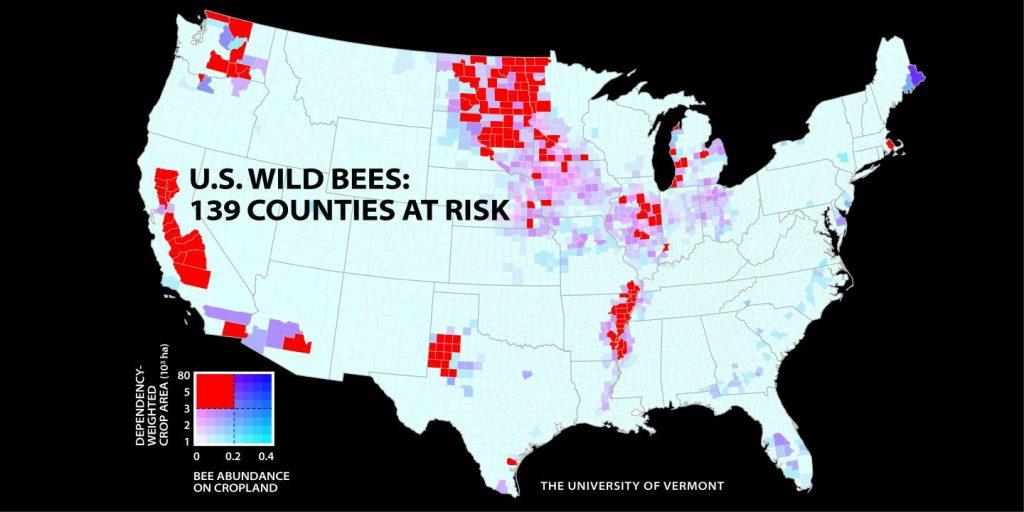 Les comtés aux USA où le déclin des abeilles sauvages est le plus important - Crédit : PNAS