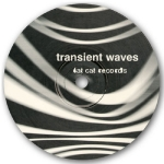 Transient Waves - Born With A Body And Fucked In The Head Download