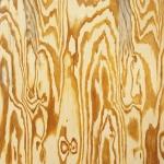 Mazes - Wooden Aquarium PRE-ORDER