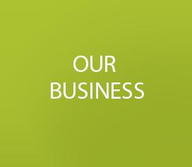 BUSINESS.png#asset:18796:url
