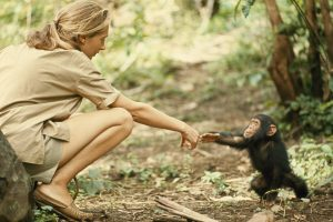 jane-goodall-with-monkey