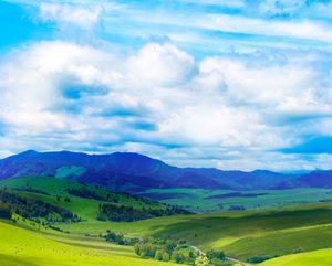 Salvalco Green Air