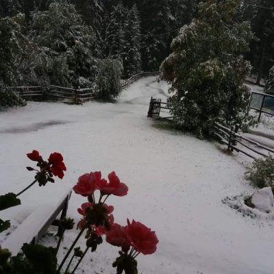 Aggiornamento da Monte San Vigilio