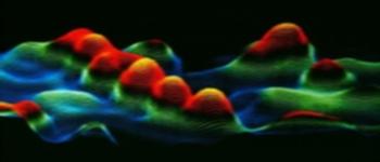 Nanoscienze