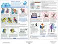 Mercury Marauder 2004 - Safety Advice Card Printing 1 (pdf)