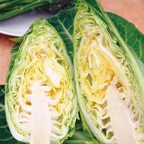 Get Growing Cabbage Heart - Dutchman