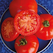 Tomato Red Bodyguard F1 Seeds