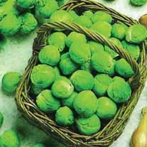 Brussels Sprout Bedford (Fillbasket) Seeds