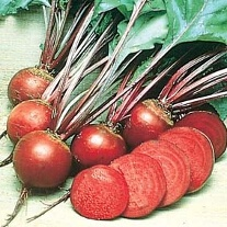 Beetroot Boltardy AGM Seeds