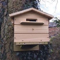 Beepol Tree Villa and Bumblebee Hive