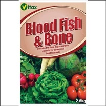 Blood, Fish And Bone