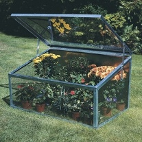 Cold Frame - Single Lid