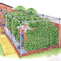 Fruit Cage Door - Deluxe