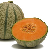 Melon Diva F1 Plants