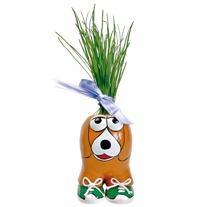 Munakuppi Dog Grow Kit