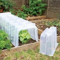 Rainwater Harvesting Cloche Ends