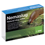 Nemaslug® Biological Slug Killer 100m²