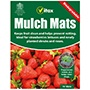 Strawberry Plant Protection Mats 10 inch