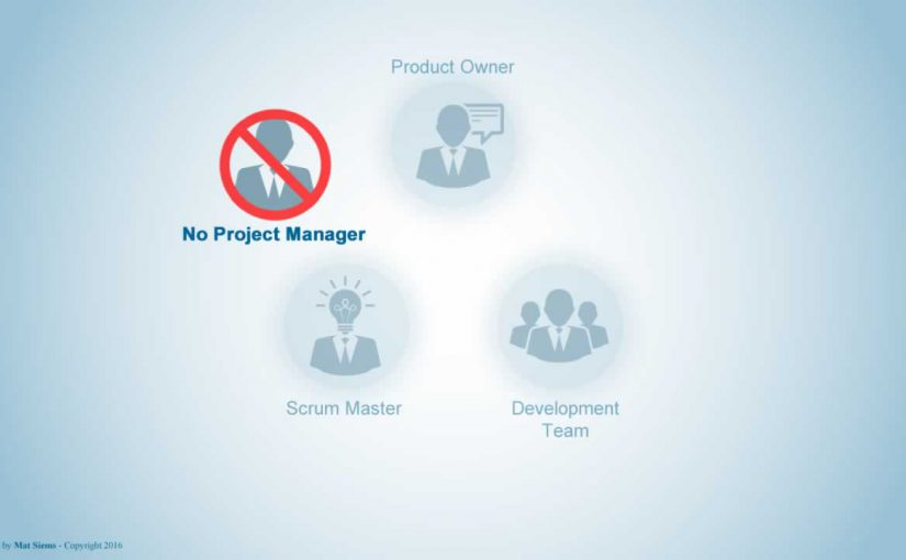 No Project Manager