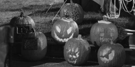 Pumpkins Bw