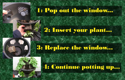 plantopia easy fill 12 inch hanging basket instructions