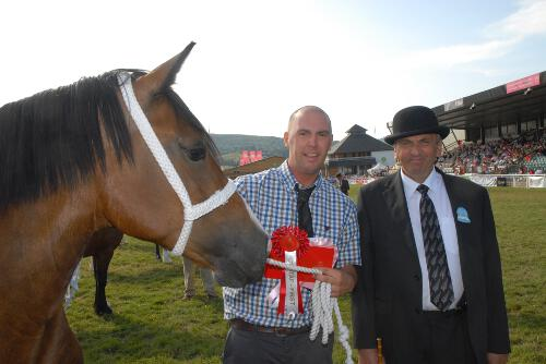 Royal Welsh show
