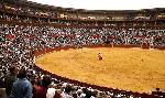 Boletos Toros Pamplona - Compra y venta boletos Toros Pamplona