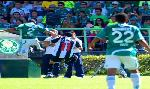 Boletos Palmeiras - Compra y venta boletos Palmeiras