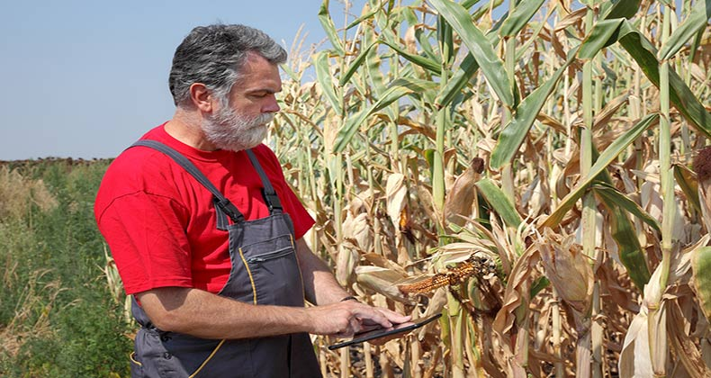 credito-financiar-danos-agricultura