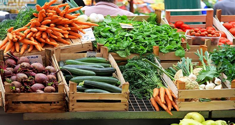 superavit-balanza-comercial-agroalimentaria-union-europea-crece