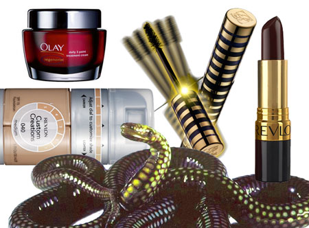 beauty discoveries 2008
