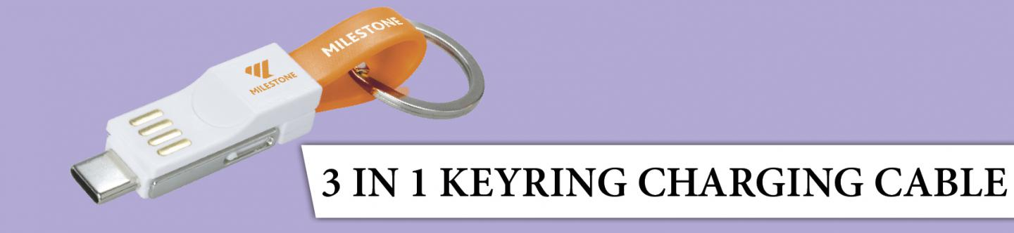 3 In 1 Keyring Charging 2020