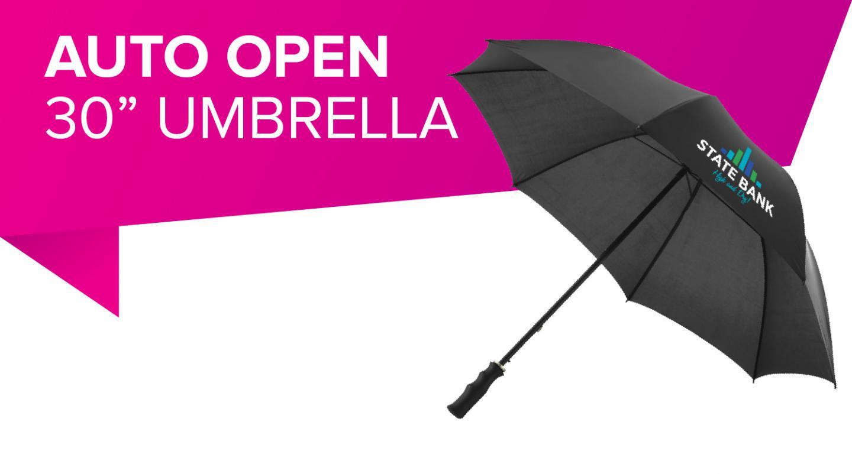 Auto Open 30 Umbrella