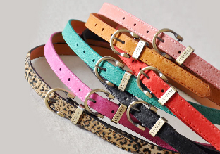 Ladies Designer Slim Belts