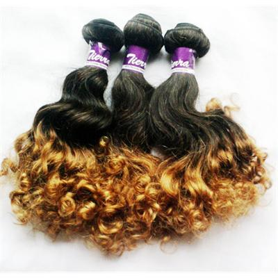 Tierra Signature Ombre Curly 300 Grms 12 Inches
