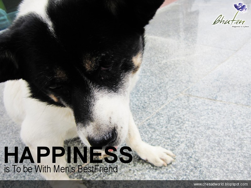 Happiness is To be With Men's BestFriend