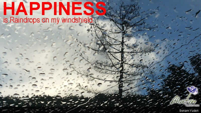 Happiness is Raindrops on my windshield.