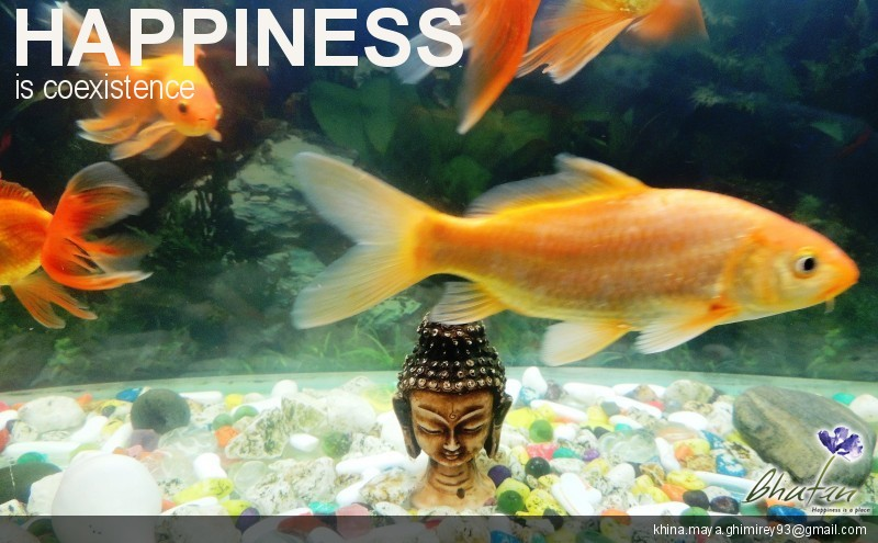 Happiness is coexistence