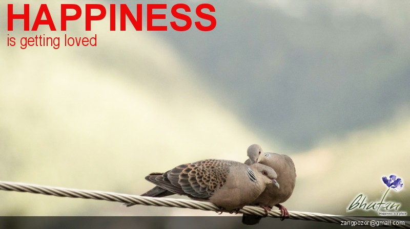 Happiness is getting loved