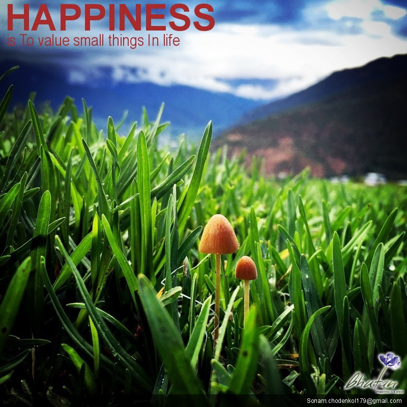 Happiness is To value small things In life