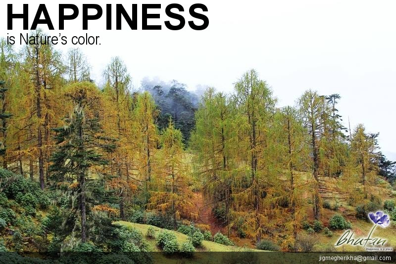 Happiness is Nature's color.